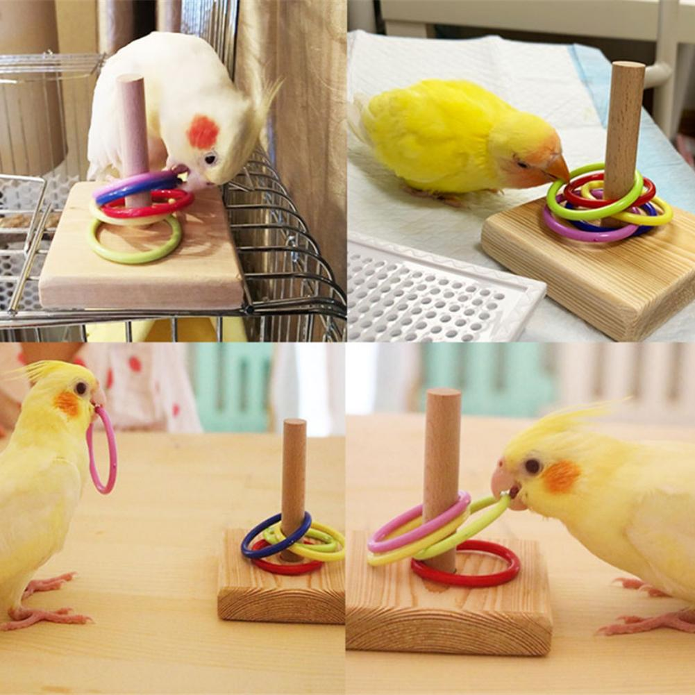 Bird Toys Bird Trick Tabletop Toys Bird Education Interaction Toy Play Training Activity Toy For Bird Support Dropshipping