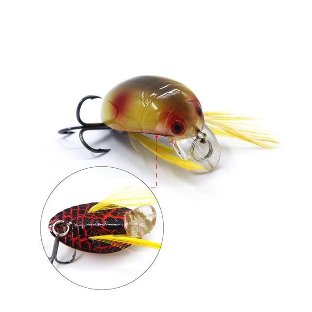 1 Pc Gorgons Indah Memancing 35 Mm 4g Jangkrik Umpan Memancing Umpan Serangga Bug Lure Laut Beetle Engkol Untuk Bass Memancing Ikan Mas Memancing Umpan Aliexpress