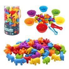 Crianças arco-íris jogo de correspondência cognição animal arco-íris cor espécie multa formação do motor montessori sensorial educação puzzle brinquedo presente