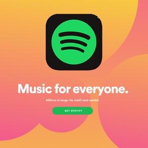 Offline Spotify Premium-Service User 12-Months Listening High-End Music Master Non-Destructive