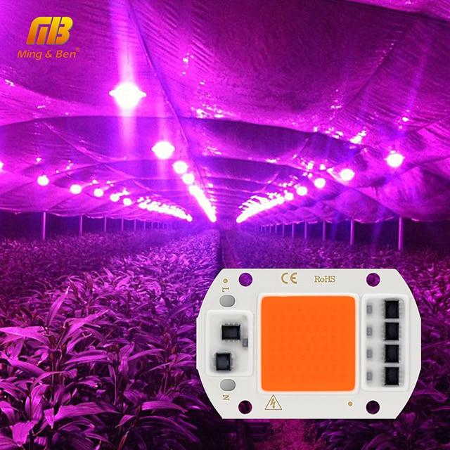 LED 성장 COB 칩 Phyto 램프 전체 스펙트럼 AC220V 10W 20W 30W 50W 실내 식물 모 종 성장 및 꽃 성장 Fitolamp