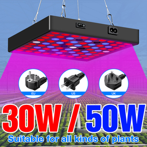 LED Grow Light 20W 40W Full Spectrum LED Plant Lamp 30W 50W Indoor Growing Lamps LED Phyto Lamp For Seedling Greenhouse Lighting