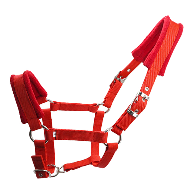 Padded Horse Halter Bridle/Rein - Durable & Comfortable 5