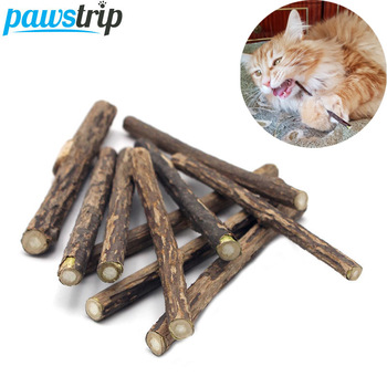 10/15/20pcs/lot Natural Matatabi Pet Cat Snacks Sticks Cleaning Tooth Catnip Cat Toys Actinidia Silvervine Pet Toy For Cats 1