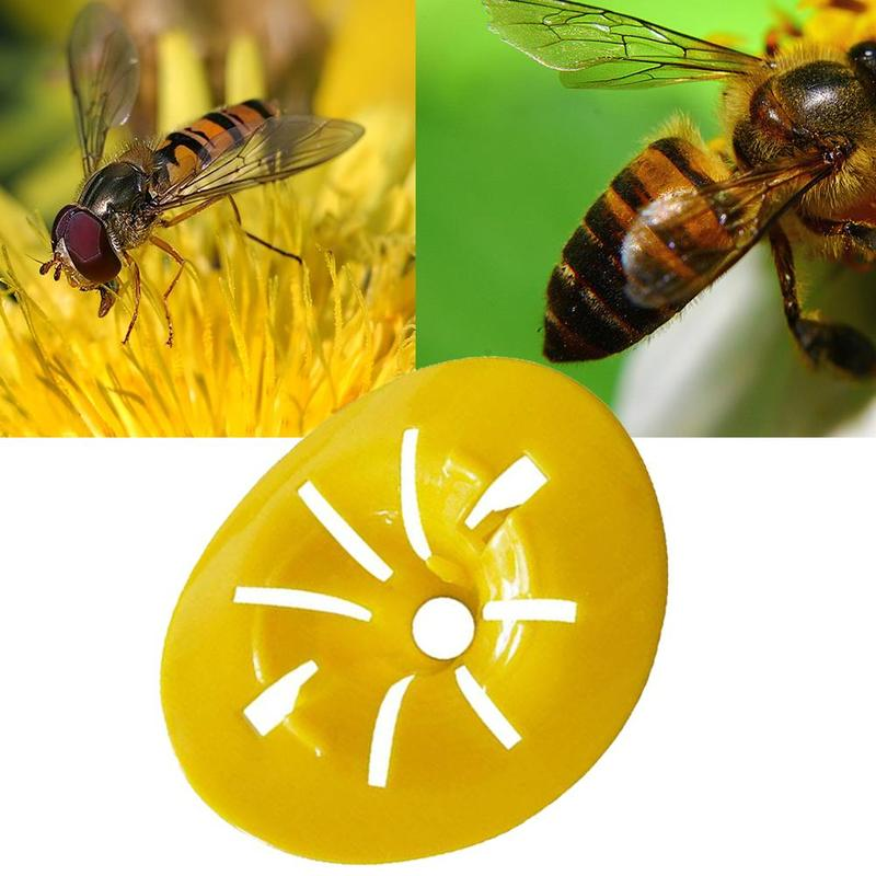 Wasp Traps Collecting Cage Bee Tiger Bee Traps Catching Beekeeping Tools Reusable Collecting Bee Tool Garden Yard Supplies
