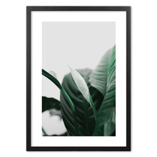 Dark Green Leaves Plant Quotes Nordic Posters And Prints Wall Art Paper Painting Wall Pictures For Living Room Home Decor green leaves wall art canvas painting green style plant nordic posters and prints wall art poster pictures for living room 5 19
