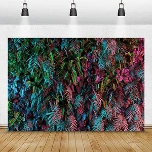 Image 4 - Laeacco Tropical Wald Grün Pflanzen Blätter Laub Fotografie Kulissen Fotografischen Hintergründe Geburtstag Photo Photozone