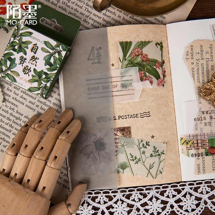 45 قطعة/صندوق الأخضر الطبيعي القرطاسية ملصقا Kawaii مذكرات اليدوية ورق لاصق تقشر اليابان ملصقا القرطاسية سكرابوكينغ