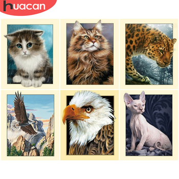 HUACAN DIY Pictures By Number Animal Kits Drawing On Canvas Painting By Numbers Owl Hand Painted Picture Art Gift Home Decor