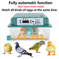 incubator Egg automatic incubator brooding machine chick incubator home incubator controller farm egg incubator 16eggs incubator