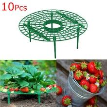Strawberry Stand Frame Holder…
