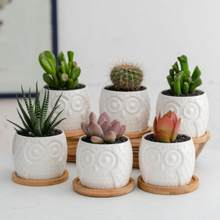6pcs/set Ceramic Owl Shape Garden Flower Pot Desktop Plant Pot Creative Design Succulent Planter Pot Home Garden Decoration Gift