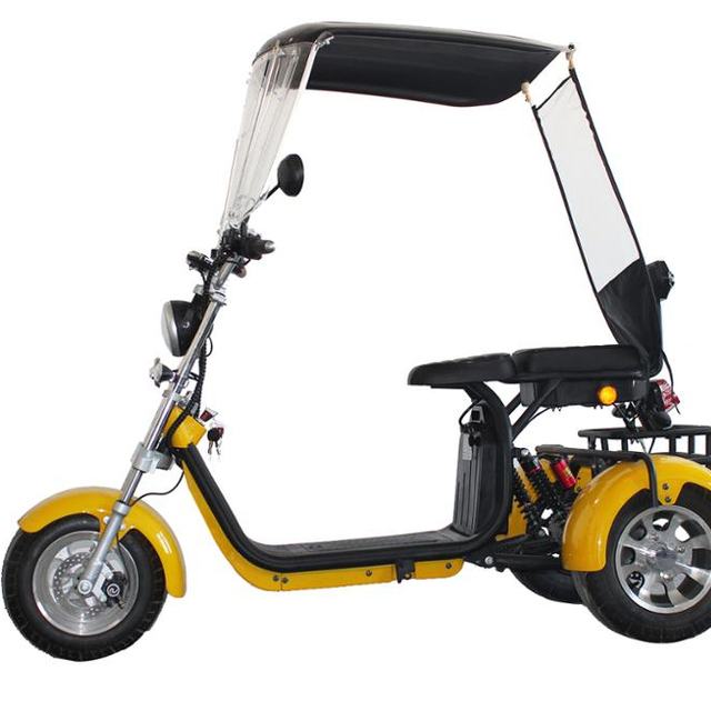 Emak/COC/EEC Electric Motorcycle Modern Design 3 Wheel Electric Scooter 2000W Citycoco For Adult EEC Standard Electro Tricycle 1