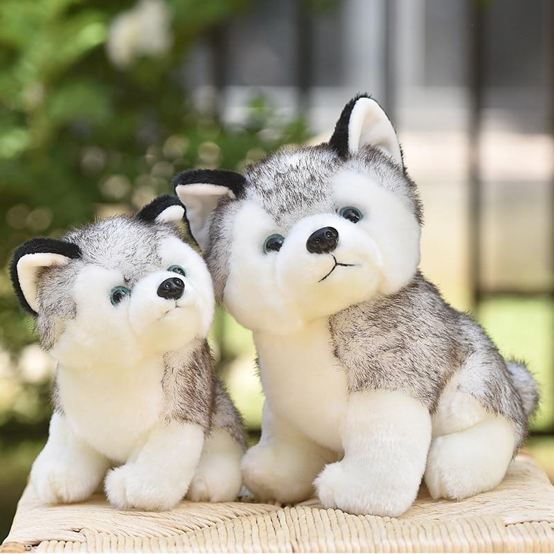 20-30cm Cute Husky Dog Plush Toy Wolf Soft Stuffed Animal Cute Plush Kawaii Children Doll Fluffy Birthday Gift Child Boy WJ131