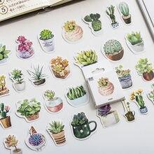 Mohamm 50 pçs encaixotado adesivos sentimentos de succulentsstickers criativo bonito dos desenhos animados planta adesivo flocos scrapbooking presente menina sch