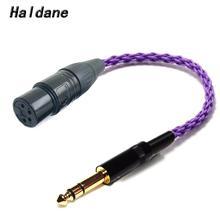 Haldane HIFI 6.35mm 1/4 mâle à 4 broches XLR femelle connexion équilibrée TRS câble adaptateur Audio 6.35mm à XLR connecteur plaqué argent