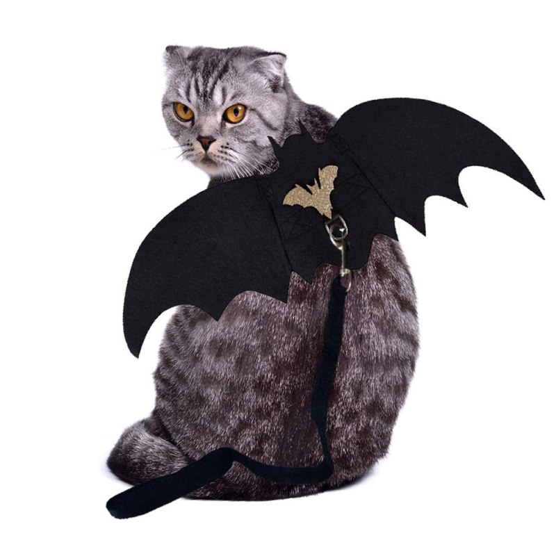 Pet Bat Wing With Ropes Cosplay Prop Halloween Costume