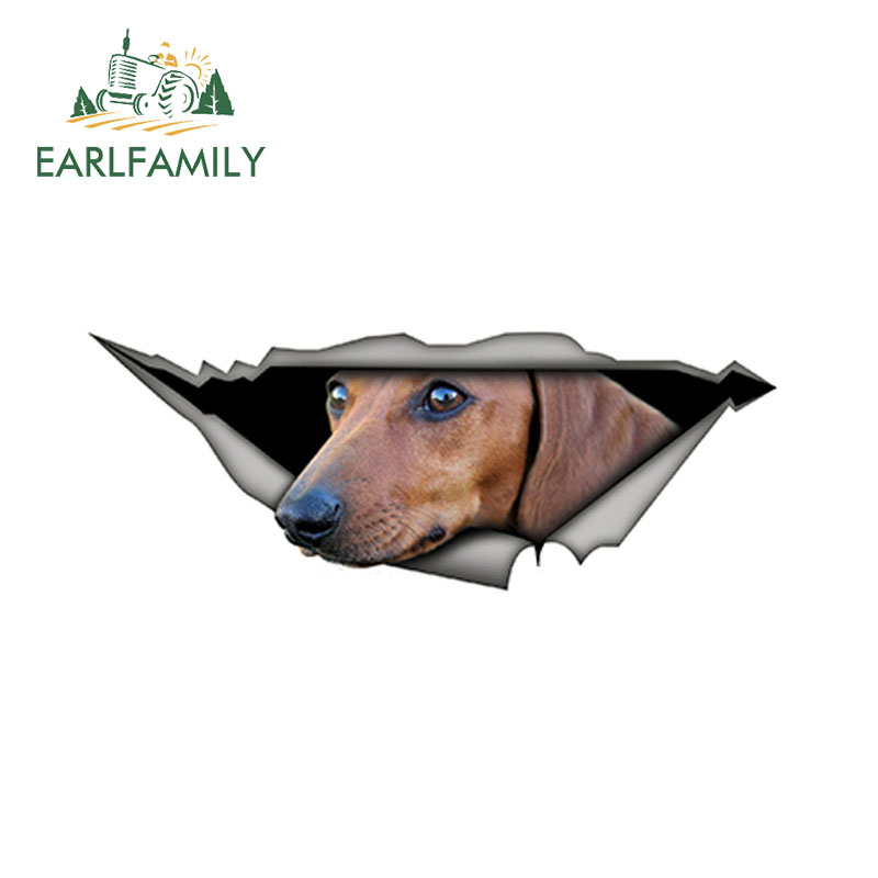 2x 3D Dog Animal Paw FootPrint Car Window Bumper Body Decal Decorative Stickers
