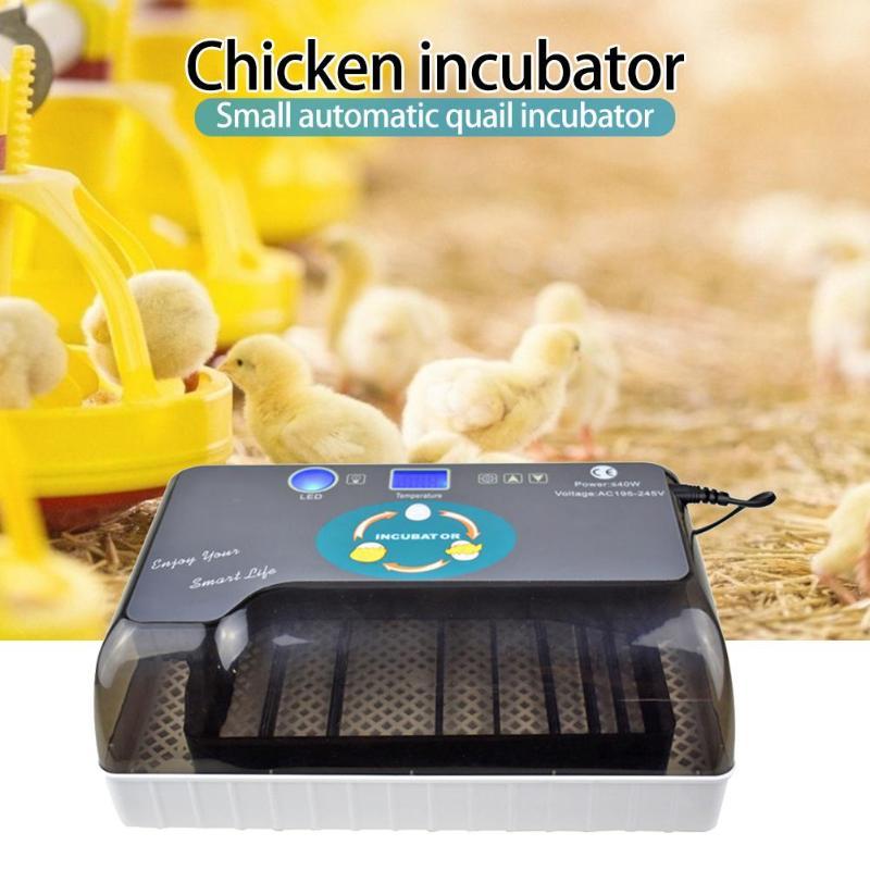 12Egg Incubator Hatchers Chicken Incubadora Automatic Farm Quail Egg Hatchery Machine for Sale Quail Brooder EU/USPlug