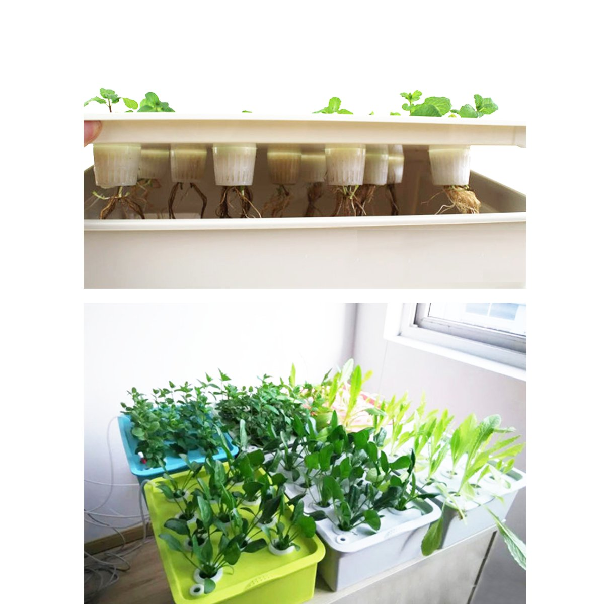 New 9 Holes 220V Plant Site Hydroponic Systems nursery pots Soilless cultivation plant seedling Grow Kit|Nursery Pots| |  - title=