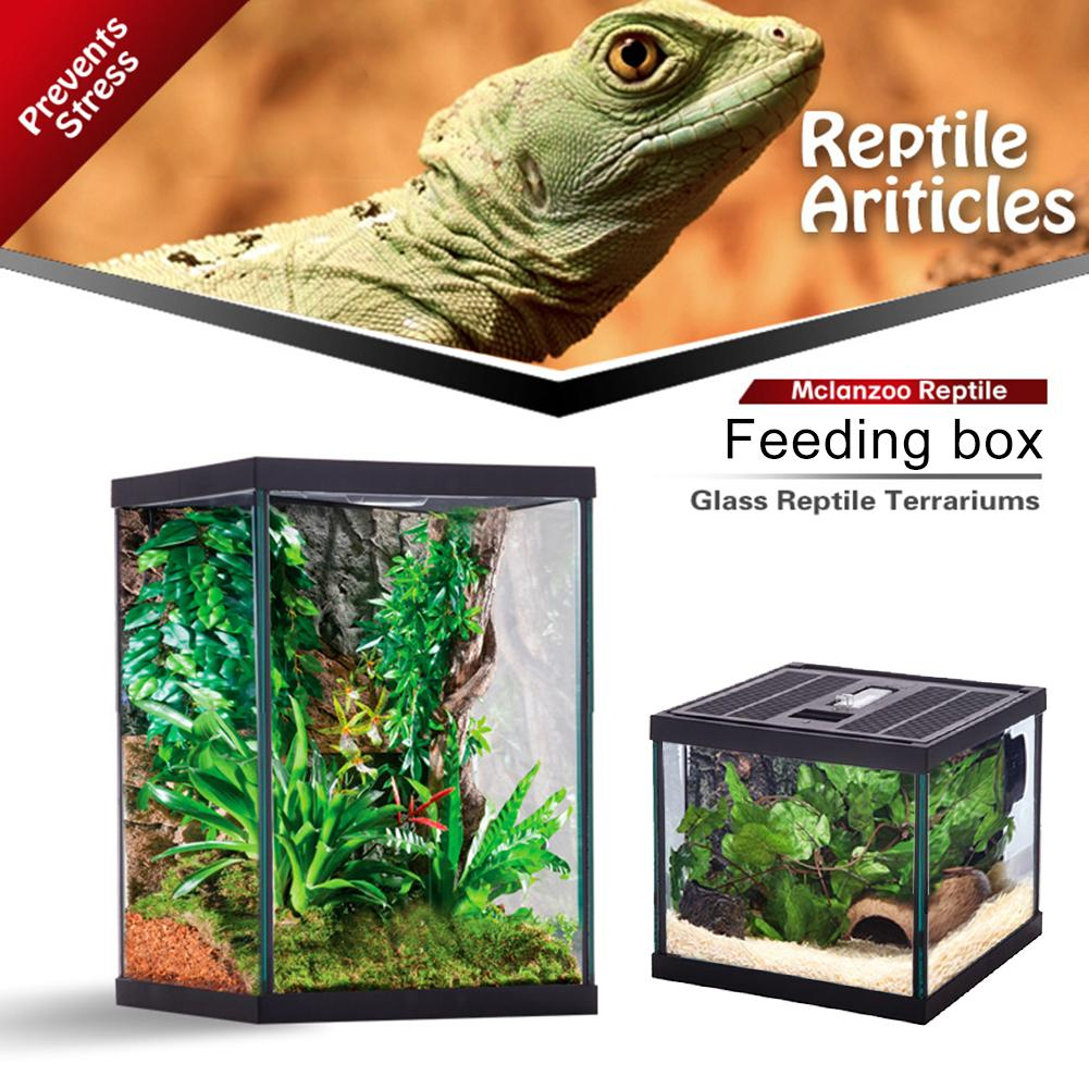 Reptile Glass Terrarium Natural Comfortable Crawling Box Turtle Feeding Box Container For Crawling Pet Spider Lizard Gecko