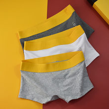 Culottes en coton pour femmes, lot de 3 pièces, sous-vêtements taille élastique, Lingerie pour garçons