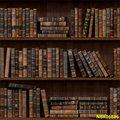 Laeacco книга со старой деревянной книжной полкой для библиотеки Кабинета Ребенка портрет фото фон фотография Фон фотосессия Фотостудия