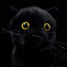 Vita reale carino mucca nere gatto regalo per bambini Felis Catus peluche ripiene morbido Bombay simulazione realistica animale bambino bambola originale