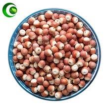 Natural Semen Euryaled , Euryale Ferox, Qian Shi,Gorgon Fruit, Gorg, Thorny Minoru,Minoru Thorns,Ji Tou Mi Gorgon Euryale