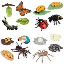 Mais novo simulação animais ciclo de crescimento modelo abelha aranha borboleta figuras de ação estatueta bonito crianças brinquedo do bebê figuras educacionais