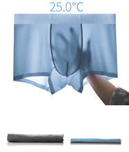 Breathable Underwear Men Ice Silk Mens summer Fashion Non-Slip Thin Pouch High Quality Underpants cueca masculina