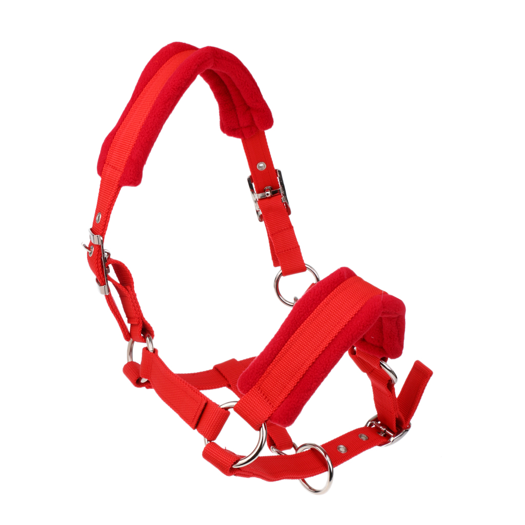 Soft Padded Adjustable Horse Head Collar Halter M + 2.5m Horse Lead Rope
