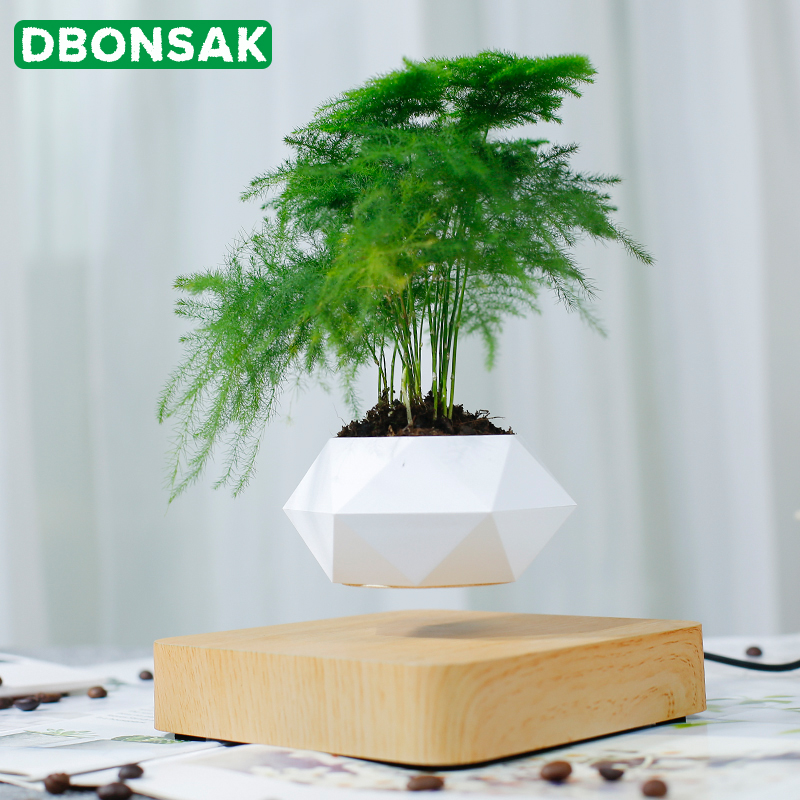 Levitating Air Bonsai Pot Magnetic Levitation Plants Planter Flower Pots Potted Succulent Plant Home Desk Office Decoration Gift Flower Pots Planters Aliexpress