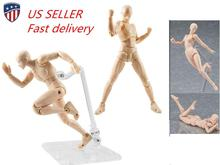 Nude Muscular Body Youth 2.0 Type 14.5cm PVC Female/Male Body Figure Movable Action Figure Collection female nude