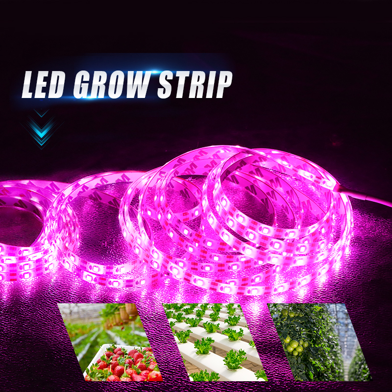 LED Grow Light Full Spectrum USB LED Strip Lights 1m 2m 3m 2835 Chip LED Phyto Lamps For Greenhouse Hydroponic Plant Growing(China)