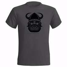 VIKING ART MENS T SHIRT NORSE NORWAY ICELAND ICELANDIC SWEDEN DANISH DENMARK tshirt new fashion top free shipping shirts(China)