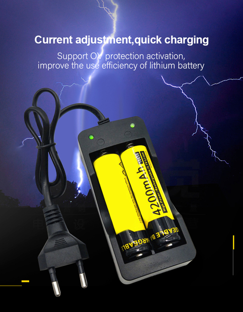 PUJIMAX battery charger 18650 EU 2slots Smart charging  Li-ion Rechargeable Battery charger 4