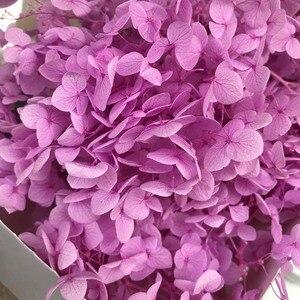 Image 4 - 20G Preserved Flowers of Viburnum Macrocephalum,Dry Natural Fresh Forever Hydrangea Eternelle Rose,DIY Immortal Flower Material