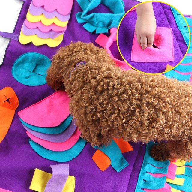 Play Rug For Pups & Kittens  3