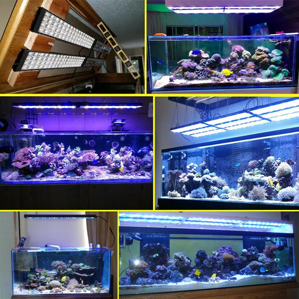 "Купить с кэшбэком PopBloom Aquarium Led Lighting Lamp For 36"" 3ft 80-100cm Aquarium Tank Marine Aquarium Led Coral Led Tank Light Turing75"