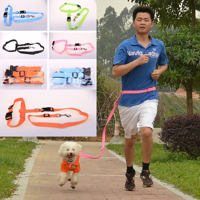 Pet Running Hand Holding Rope Dog Nursing Hand Holding Rope Morning Run Dog
