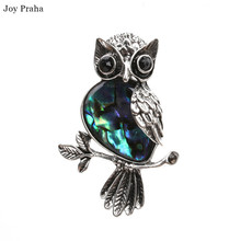 Hot selling abalone women brooch /  Fashion shell series animal owl