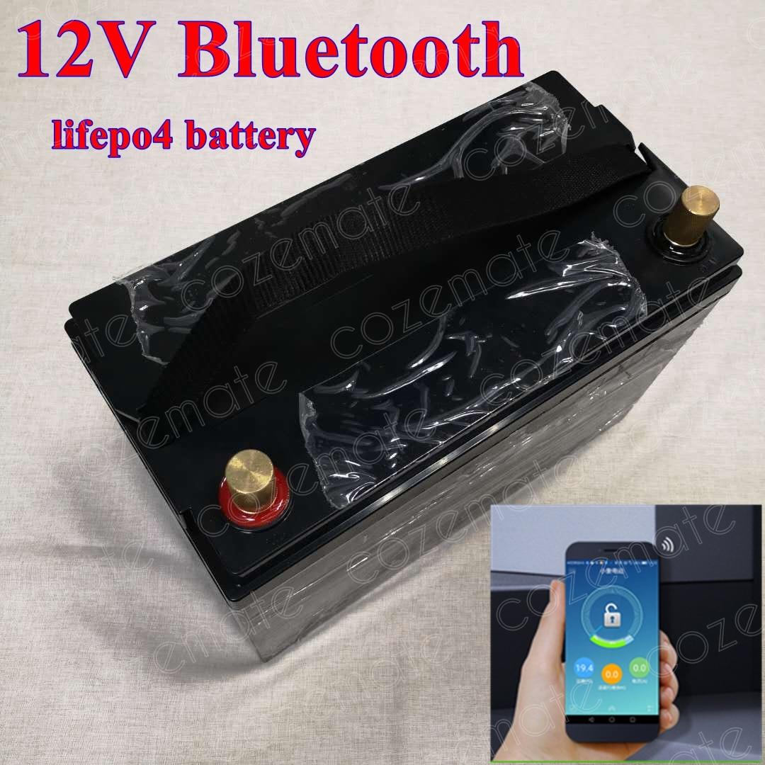 Lifepo4 12V 100Ah 120Ah 12.8v Lifepo4 bateria 100A BMS z Bluetooth App dla 1200w układ słoneczny silnik domu łódź RV + 10A ładowarka