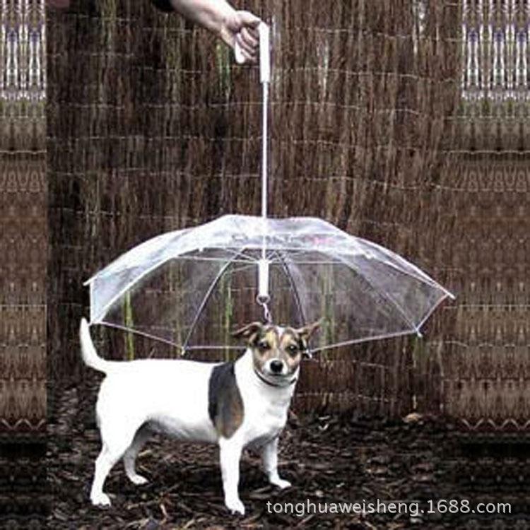 Hot Selling Pet Umbrella Teddy Small Dogs For With Traction Dog Chain Dog Umbrella Dog Rain Coat Phi Umbrella