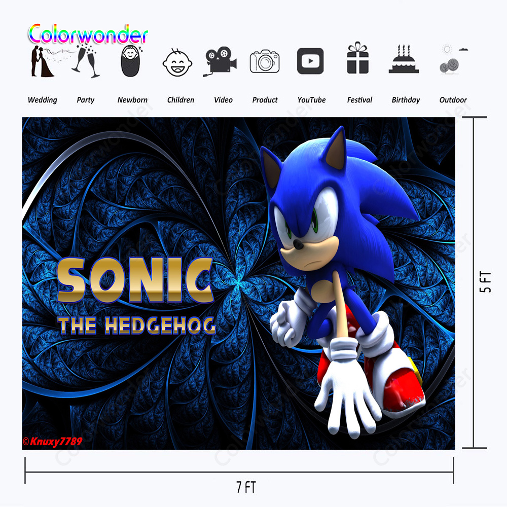 SONIC BIRTHDAY PERSONALISED BIRTHDAY PARTY BANNER BACKDROP