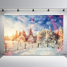 Winter Wonderland Backdrop Forest Snowflake Early Morning Warm Sun Backgrounds for Photo Studio Portrait Photography Backdrops