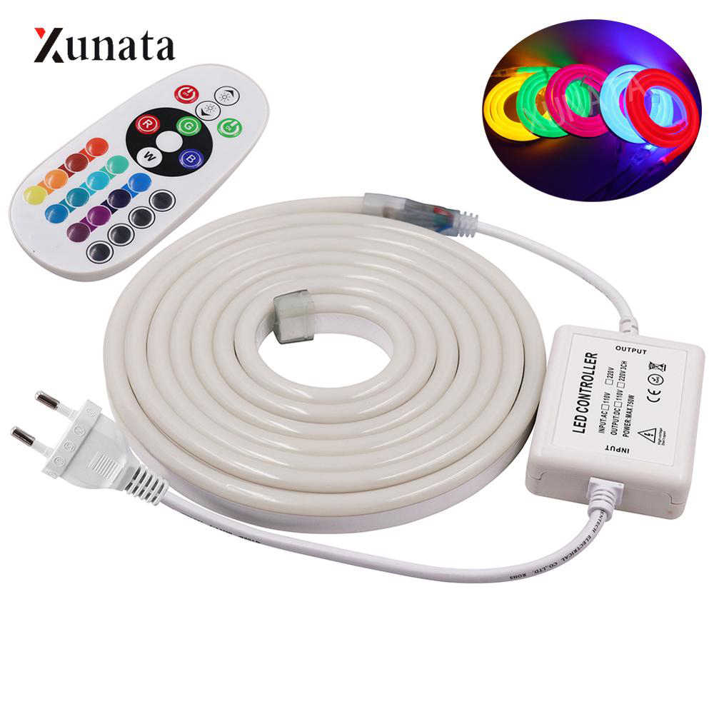 220V 120led/m 2835 LED Neon Light Sign LED Strip Neon Rope with EU Plug Flexible LED Tape 20 Key Controller Neon Tube for Decor