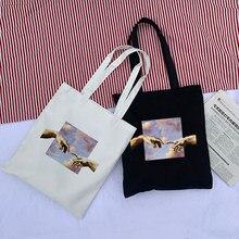 Повседневные холщовые женские сумки с принтом микеланжело, в стиле панк, большой вместимости, в стиле хип-хоп, в винтажном стиле, с надписью, ...