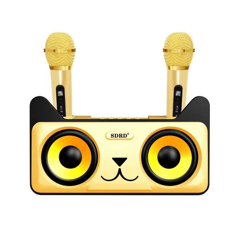 Sdrd 305 família portátil sistema de karaoke sem fio duplo microfones condensador karaoke sem fio microfone estéreo conjunto alto-falante bluetooth