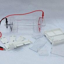 Instrumento de electroforesis de nivel de agarosa, cámara de electroforesis de ácido nucleico de DNA DYCP 31BN/CN/DN